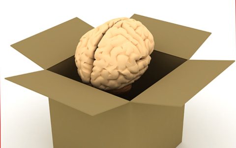 Connaissez vous le SNU, le syndrome du neurone unique ?
