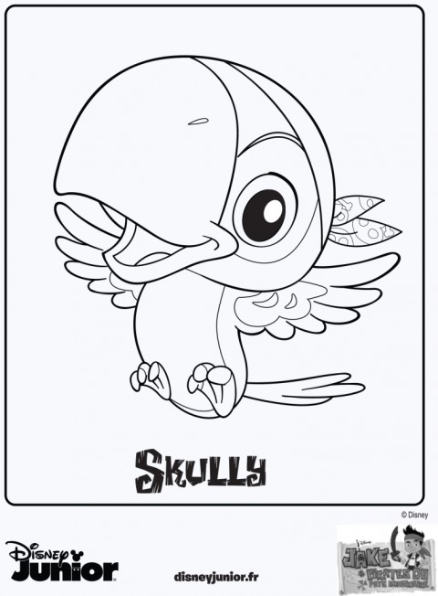 skully coloriage