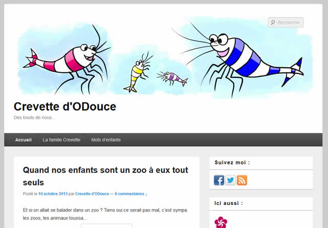 interview blogueuse crevette d'o douce