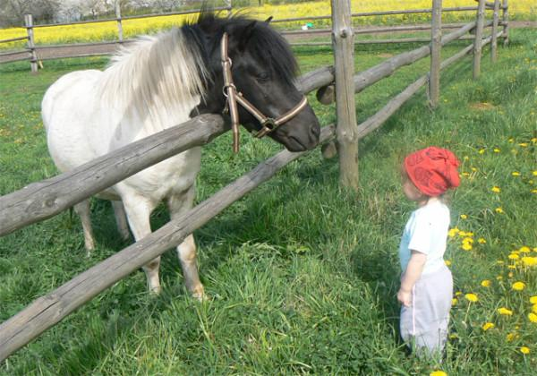 pony and child