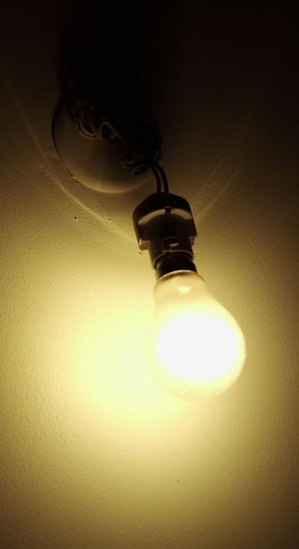 une ampoule sur un mur qui picore du pain dur lol