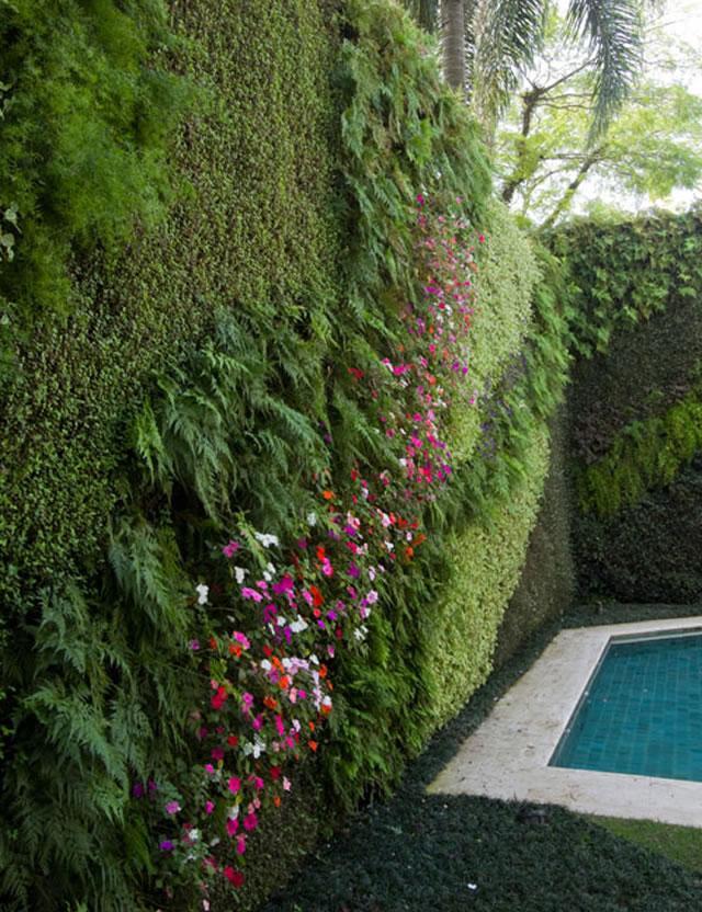 jardin-vertical-piscine