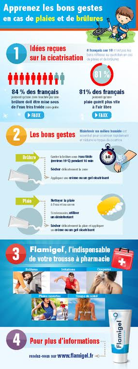 infographie-flamigel
