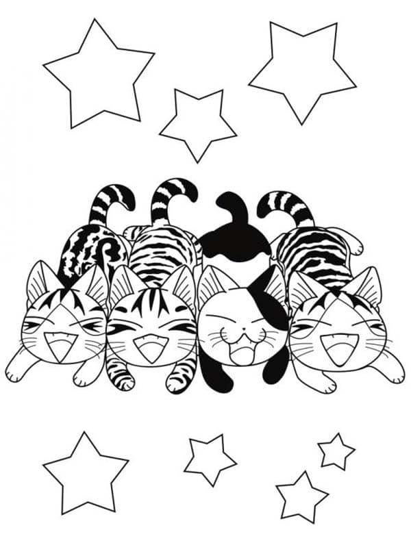 Coloriage chi une vie de chat papa blogueur - Dessin a colorier chat ...