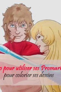 Le nuancier des Promarker est composé de 148 nuances de couleurs pour les artistes, architecte, designers, école de mode, calligraphe, pro et particulier (arts plastiques, scrapbooking, tampons, calligraphie, carterie, croquis, esquisses, ...)