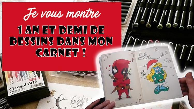 1 an et demi de dessin dévoilé en vidéo #dessin #drawing #deviantart #fanart #illustration