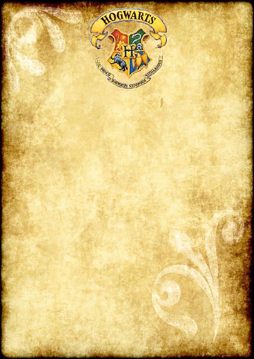 Comment Organiser Une Fete D Anniversaire Harry Potter