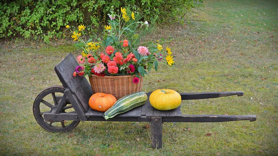 decoration fleurs citrouille automne